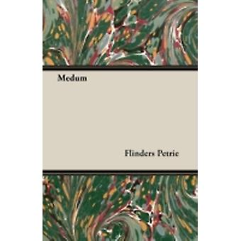 Medum by Petrie & Flinders