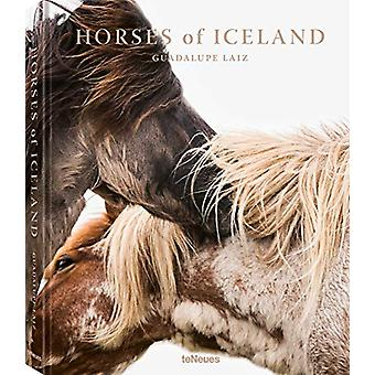 Horses of Iceland by Guadalupe Luiz - 9783961711956 Book