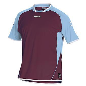 Stanno Porto SS Shirt (maroon-sky)