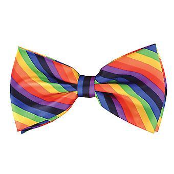 Bristol Novelty Rainbow Coloured Bow Tie