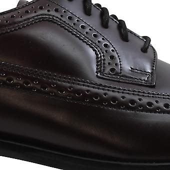 Bostonian Malden Wingtip Oxford Brown 25428 Men's