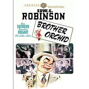 Brother Orchid (1940) [DVD] USA importieren