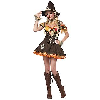 Sassy Scarecrow Deluxe Wizard Of Oz Story Book Week Halloween Womens Costume
