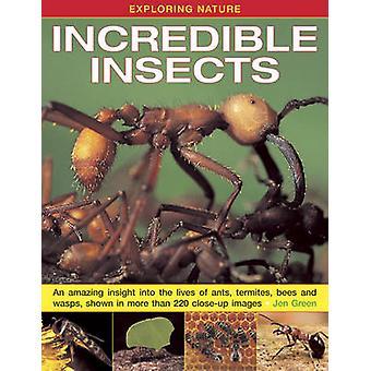 Exploration de la Nature - insectes incroyables - un aperçu étonnant de la Liv