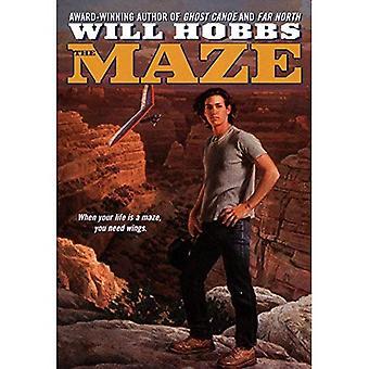 The Maze (Avon Camelot Books)