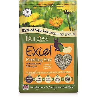 Pistéléction de foin d'alimentation Excel & Souci -1kg