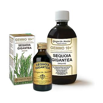 SEQUOIA 100ML ANALCO GEMMO 10+ None