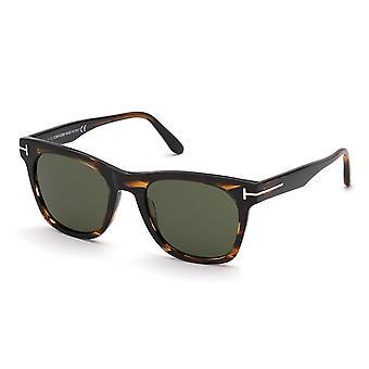 Tom Ford Brooklyn TF833 56N Havana-Andre/ Grønne Solbriller