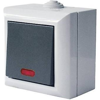 GAO 9165 natte ruimte switch Productserie verwarmingssysteem noodschakelaar business-line Grey