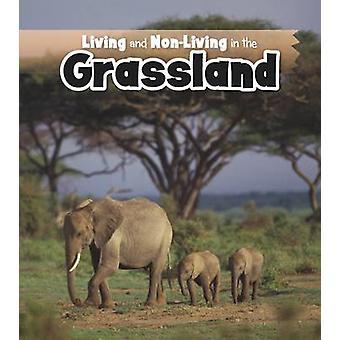 Viver e não-vivos nas pradarias por Rebecca Rissman - 97814062