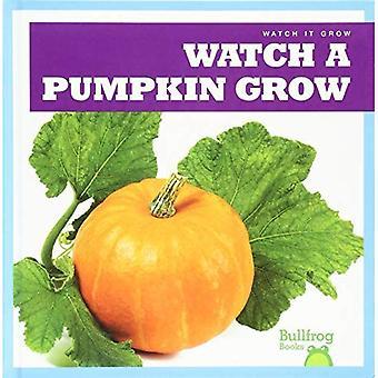 Watch a Pumpkin Grow (Watch It Grow)