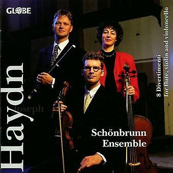 J. Haydn - Haydn: Divertimenti for Flute, Violin & Cello [CD] USA import