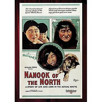 Nanook of the North [DVD] USA import