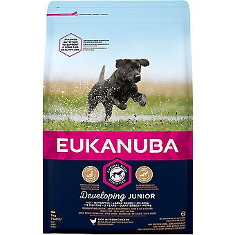 Eukanuba Ontwikkeling Junior Large Breed Chicken - 3kg