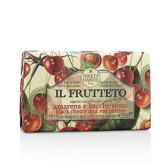 赤い果実 - 250 g/8.8 oz/Nesti ダンテ Il Frutteto 抗酸化石鹸 - ブラック チェリー