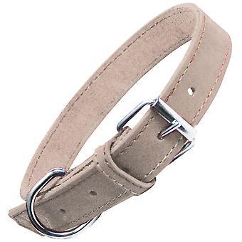 Gloria Pets Collar Oasis (Koirat , Kaulukset, Liidit ja valjaat, Kaulukset)