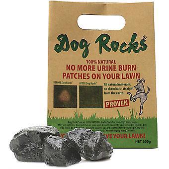 Dog Rocks - 600g