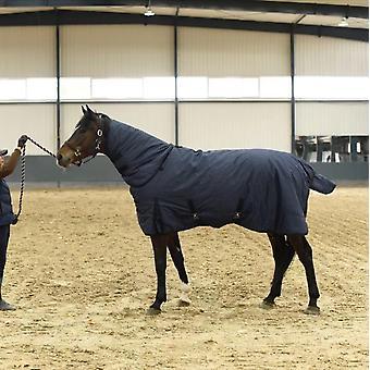فصل الشتاء للماء وورقة تنفس للخيول