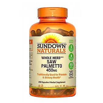 Sundown Naturals Såg Palmetto, 450 mg, 12 X 250 Caps