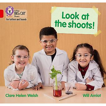 Look at the shoots by Clare Helen Welsh