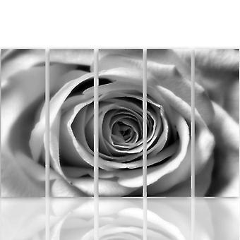 Vijf deel foto op canvas, Pentaptych, type C, Rose bloem
