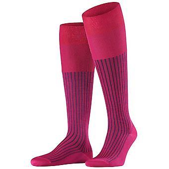 Falke Oxford Stripe Knæhøje sokker-bær pink