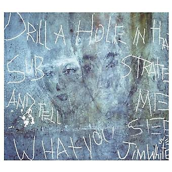 Jim White - Drill a Hole in That Substrate & Tell Me What Yo [CD] USA import