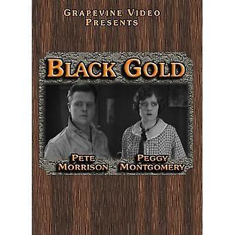 Black Gold (1924) [DVD] USA import