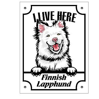 Plaque d'étain Finlandaise lapphund Kikande signe de chien