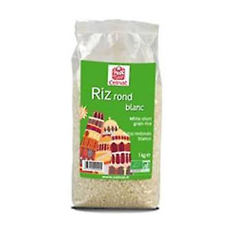 Runder weißer Reis None