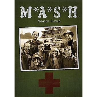 Maische-TV: Staffel 11 [DVD] USA import