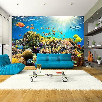 Fotobehang - Underwater Land