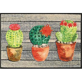 laver + tapis de sol lavable pour le mat 50 x 75 cm Jardin de Cactus à sec
