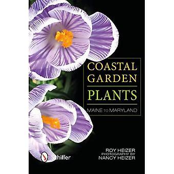 Plantas de jardín costero