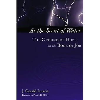 På doften av vatten: marken av hopp i Jobs bok