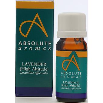 Absolute Aromas, Lavender (High Altitude), 30ml