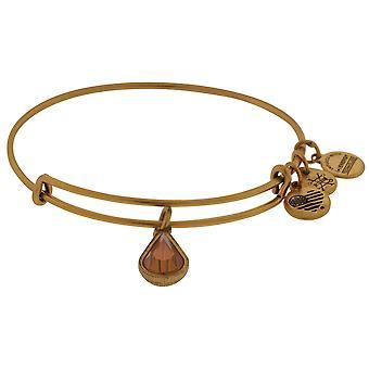 Alex and Ani November Drop Charm Bangle Bracelet - Rafaelian Gold - A17EB50RG