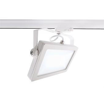 LED 3-fazowy reflektor szyny Flood SMD I 30W 4000K 110 ° biały