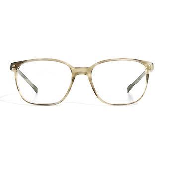 Gotti Walt HBH-M Matte Transparent Havana-Brown Glasses