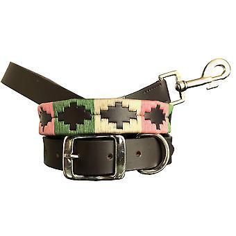 Carlos diaz genuine leather  polo dog collar and lead set cdkupb355