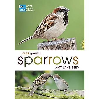 RSPB Spotlight Sparrows by Amy-Jane Beer - 9781472955937 Book