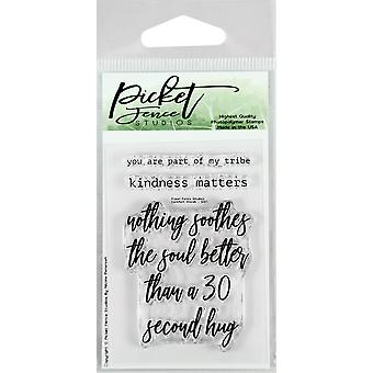 Picket Fence Studios Comfort Words Clear Stamps