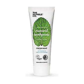 Natural Toothpaste - Mint 75 ml