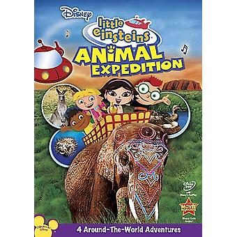 Små Einsteins - Little Einsteins: djur Expedition [DVD] USA import