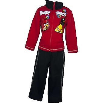Angry Birds Boys Jogging suit / Tracksuit