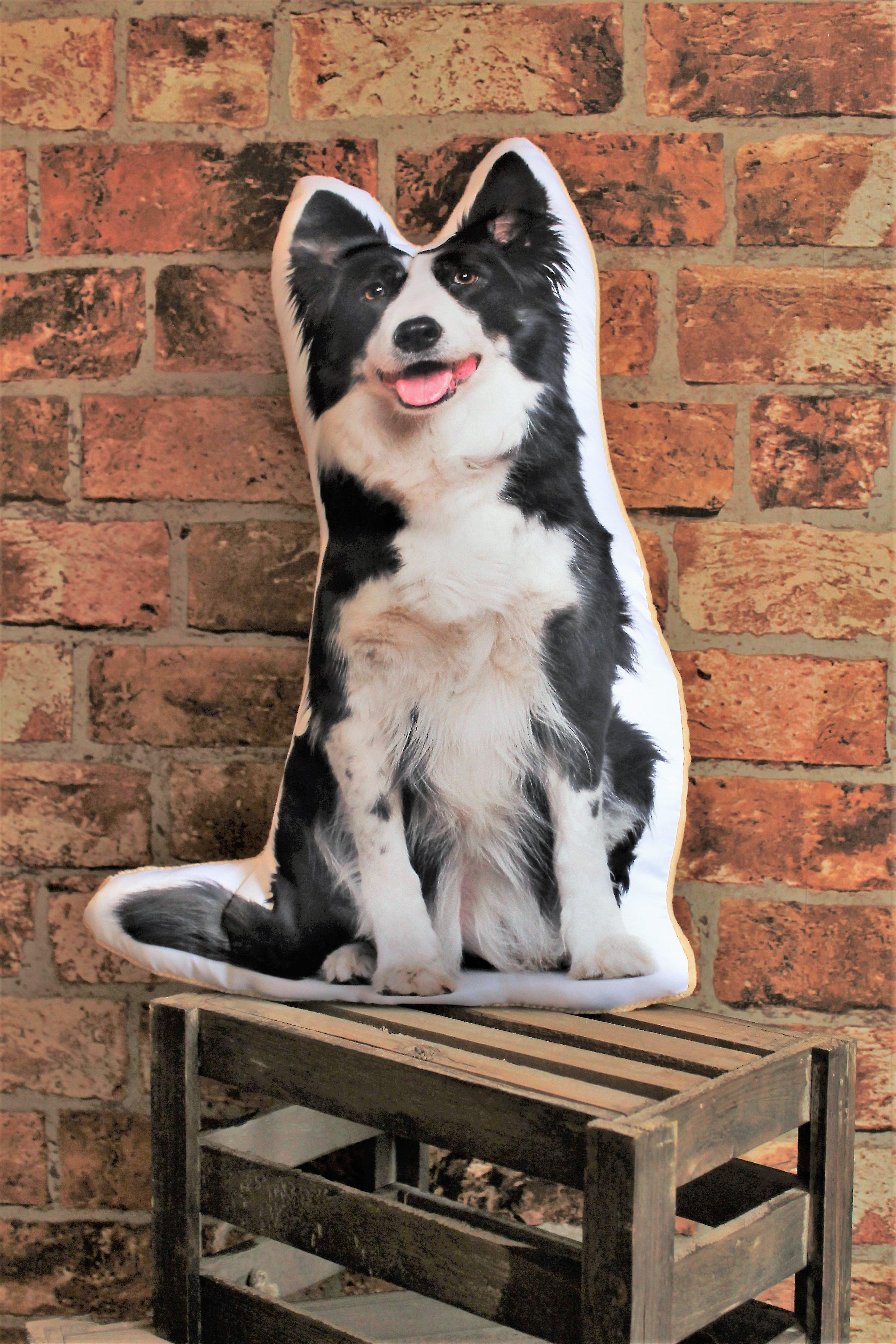 Adorable border collie shaped cushion
