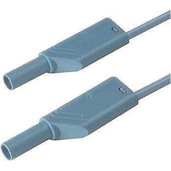 SKS Hirschmann MLS WS 100/2,5 bl Cable de prueba de seguridad [Banana jack 4 mm - Banana jack 4 mm] 1.00 m Azul 1 ud(s)