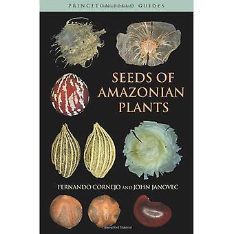 Seeds of Amazonian Plants