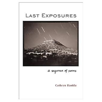 Letzte Ausstellungen: Eine Folge von Gedichten