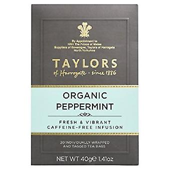Taylors of Harrogate tè biologico alla menta